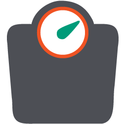 Scale icon